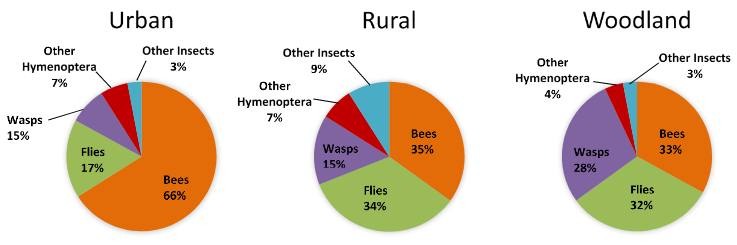Urban, rural and woodland prey categories
